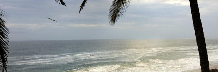 Kerala by Design © Niraamaya Retreats